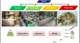 Matériaux : les nouveaux champs de recherche et développement pour la valorisation des fibres végétales techniques (lin fibres et chanvre)